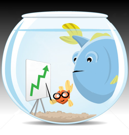 Executive Career Growth: Big Fish in Small Pond